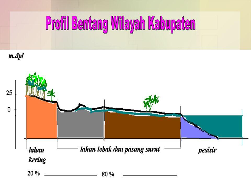 Profil Bentang Wilayah Kabupaten