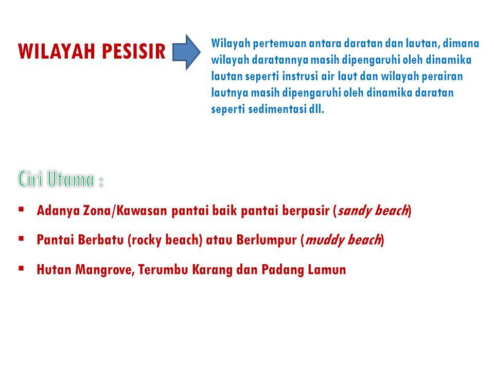 WILAYAH PESISIR Ciri Utama :