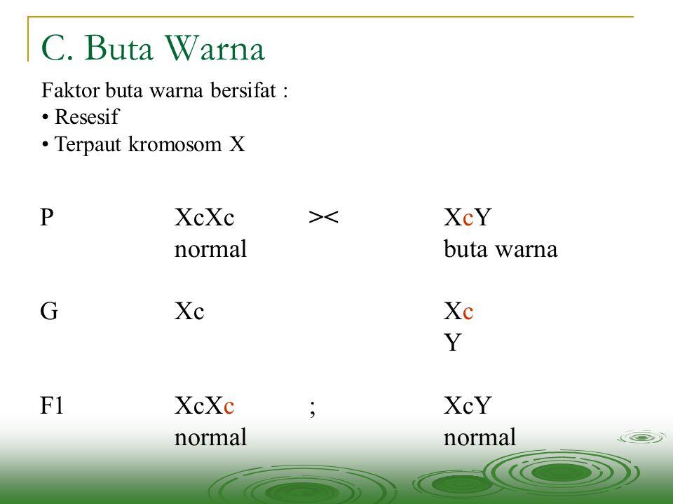 C. Buta Warna P XcXc >< XcY normal buta warna G Xc Xc Y