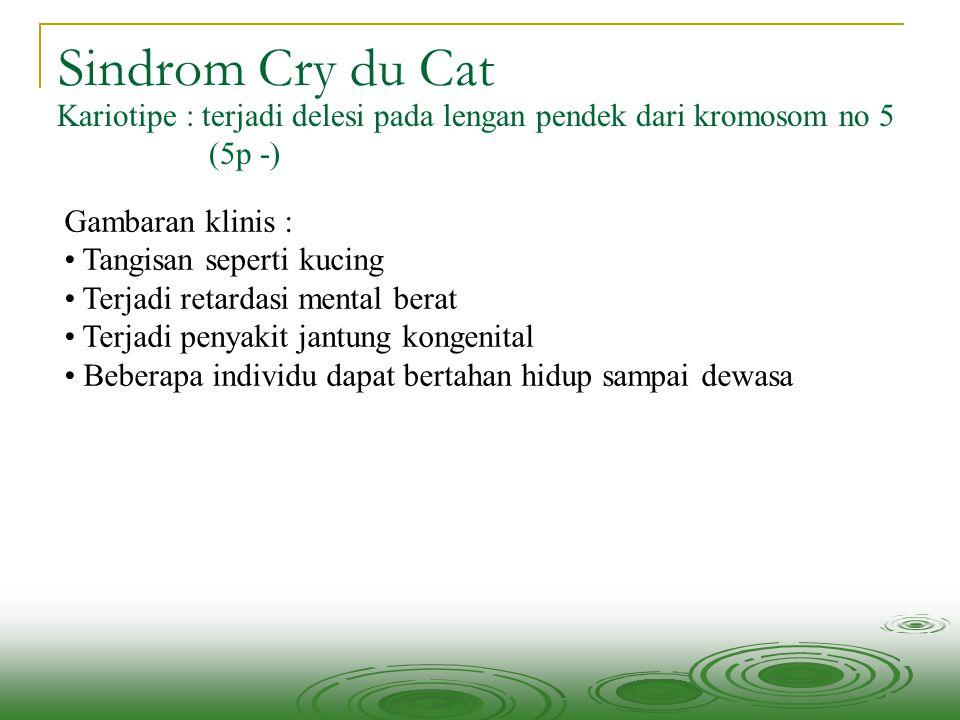 Sindrom Cry du Cat Kariotipe : terjadi delesi pada lengan pendek dari kromosom no 5. (5p -) Gambaran klinis :