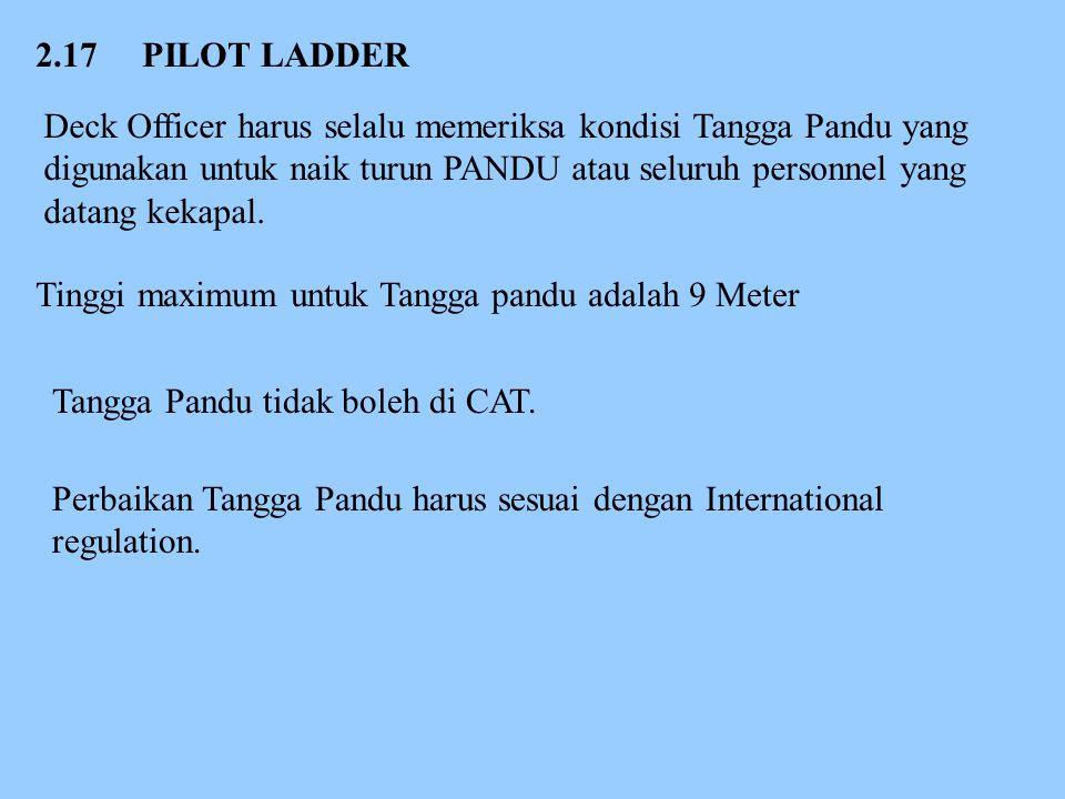 2.17 PILOT LADDER