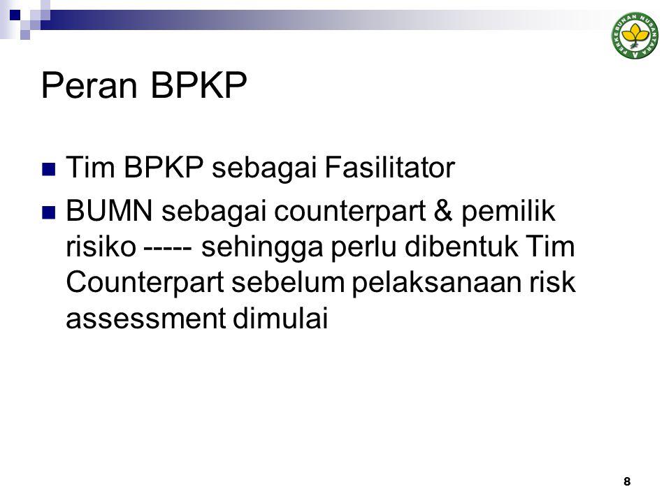 Peran BPKP Tim BPKP sebagai Fasilitator