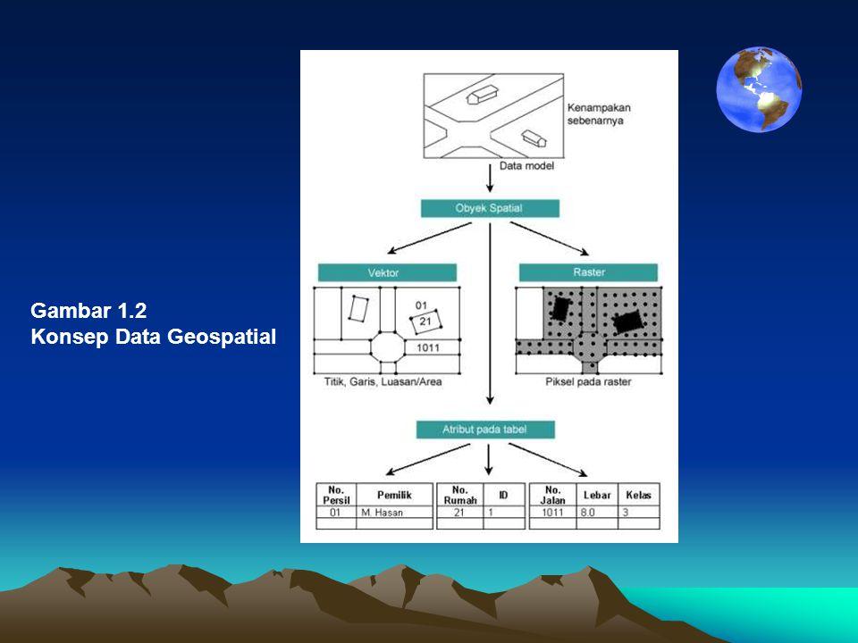 Gambar 1.2 Konsep Data Geospatial