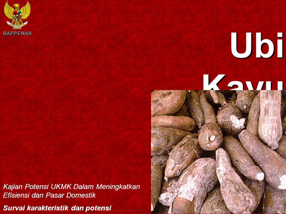 BAPPENAS Ubi Kayu. Kajian Potensi UKMK Dalam Meningkatkan Efisiensi dan Pasar Domestik. Survai karakteristik dan potensi.