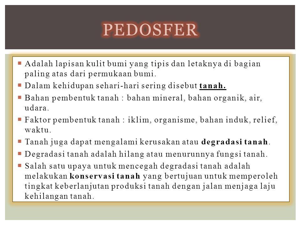 pedosfer Adalah lapisan kulit bumi yang tipis dan letaknya di bagian paling atas dari permukaan bumi.