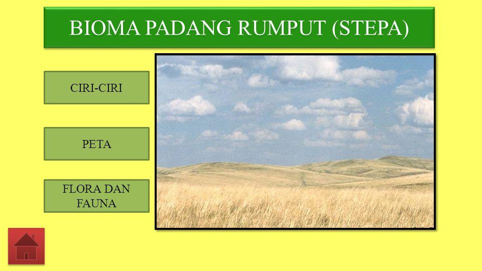 BIOMA PADANG RUMPUT (STEPA)