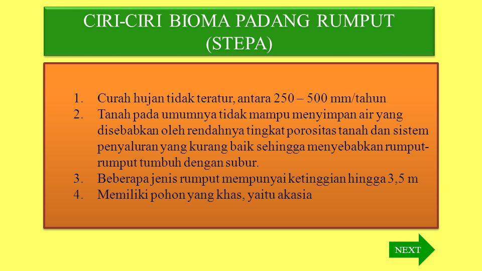 CIRI-CIRI BIOMA PADANG RUMPUT (STEPA)