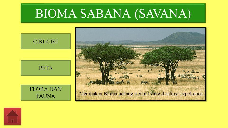 Merupakan Bioma padang rumput yang diselingi pepohonan.