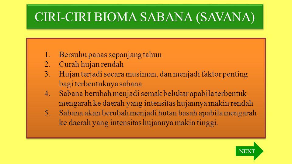 CIRI-CIRI BIOMA SABANA (SAVANA)