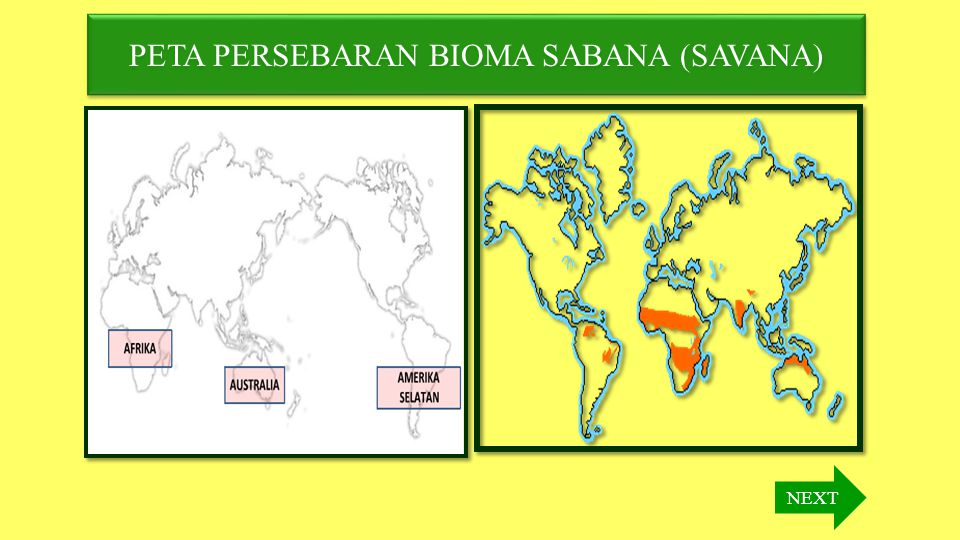 PETA PERSEBARAN BIOMA SABANA (SAVANA)
