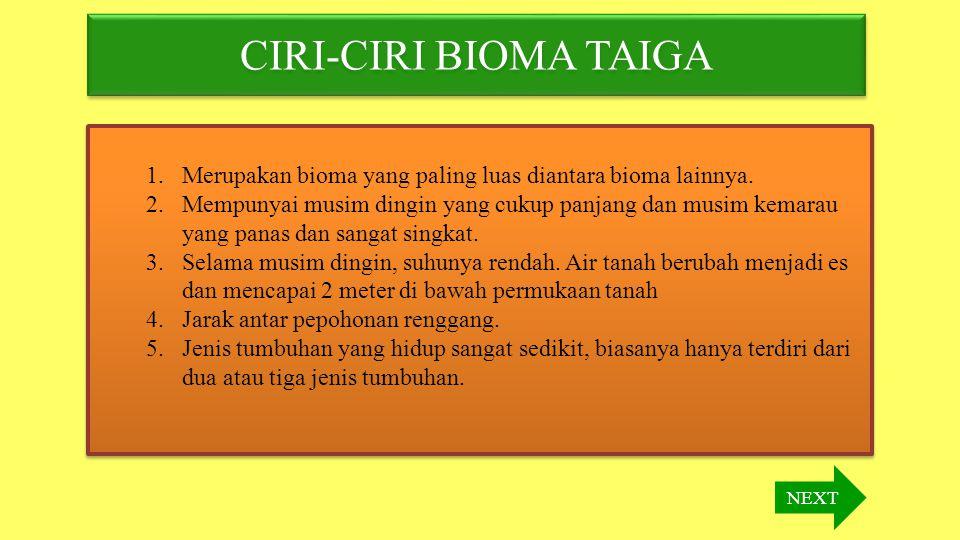 CIRI-CIRI BIOMA TAIGA Merupakan bioma yang paling luas diantara bioma lainnya.