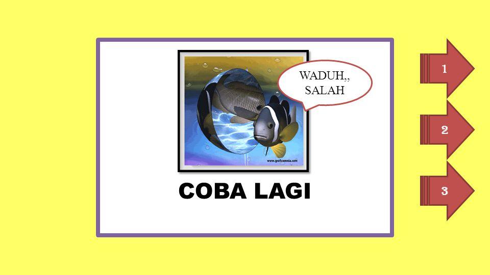 COBA LAGI 1 WADUH,, SALAH 2 3