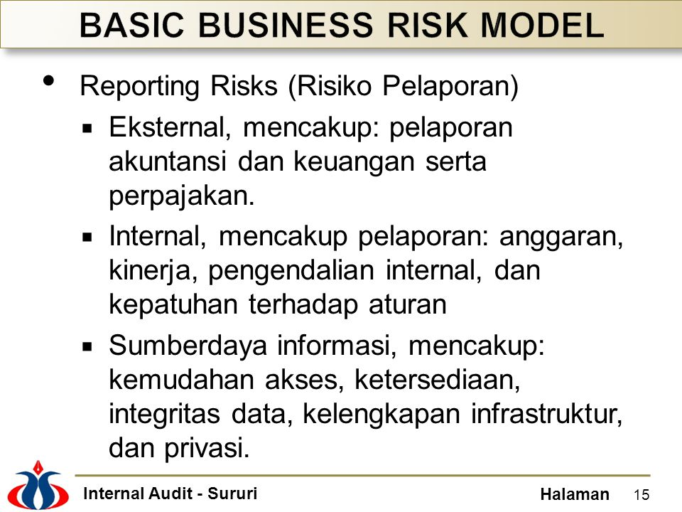 BASIC BUSINESS RISK MODEL
