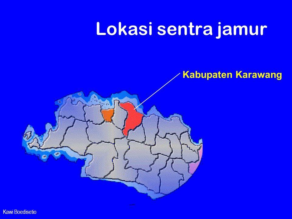 Lokasi sentra jamur Kabupaten Karawang Kawi Boedisetio