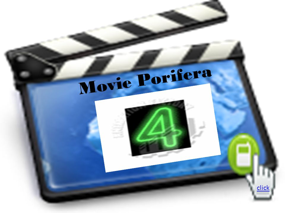 Movie Porifera click
