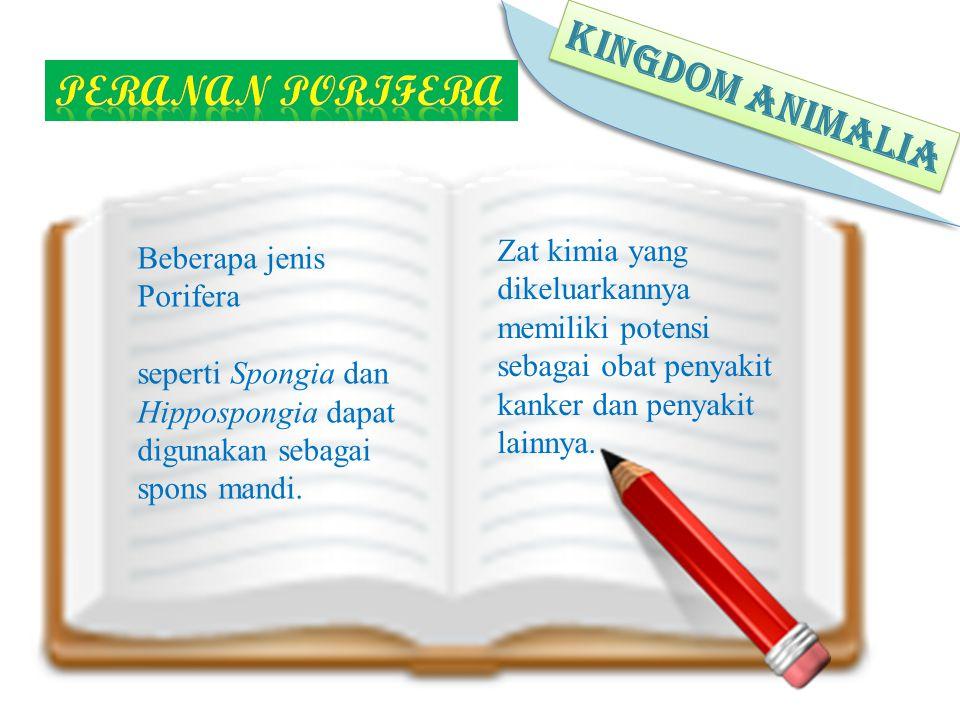 KINGDOM ANIMALIA Peranan porifera