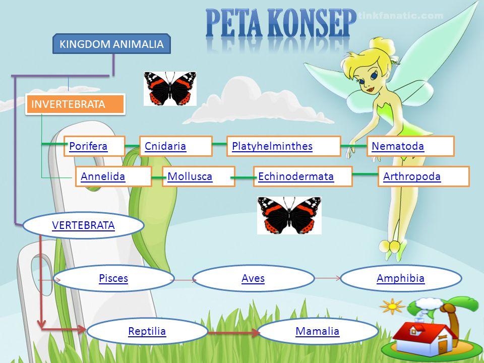 Peta konsep KINGDOM ANIMALIA INVERTEBRATA Porifera Cnidaria