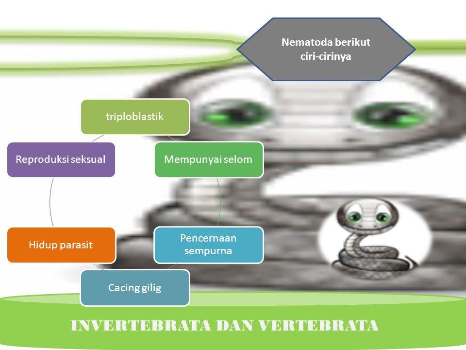 Nematoda berikut ciri-cirinya