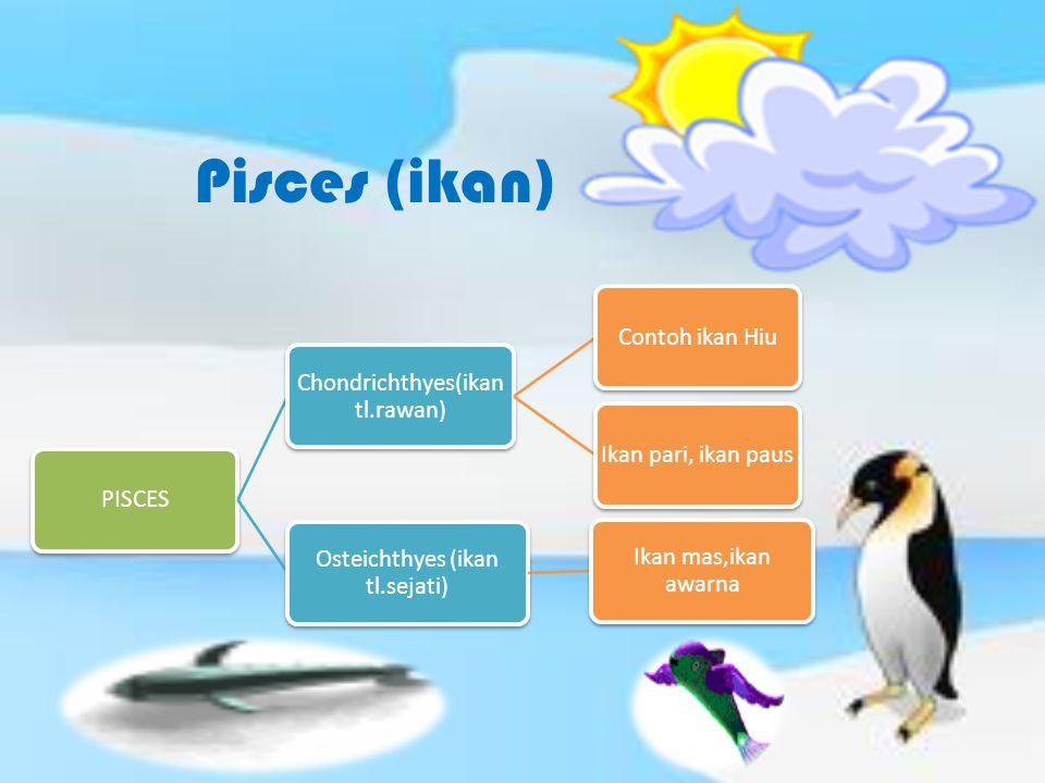Pisces (ikan) PISCES Chondrichthyes(ikan tl.rawan) Contoh ikan Hiu