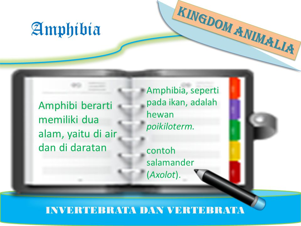 Amphibia KINGDOM ANIMALIA