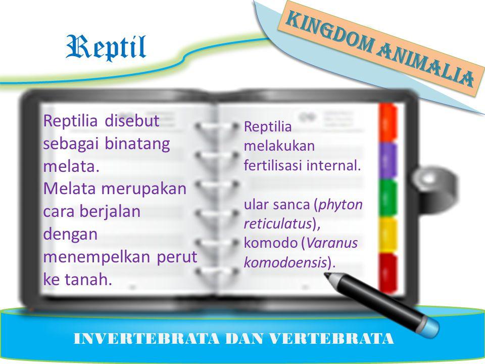 Reptil KINGDOM ANIMALIA Reptilia disebut sebagai binatang melata.