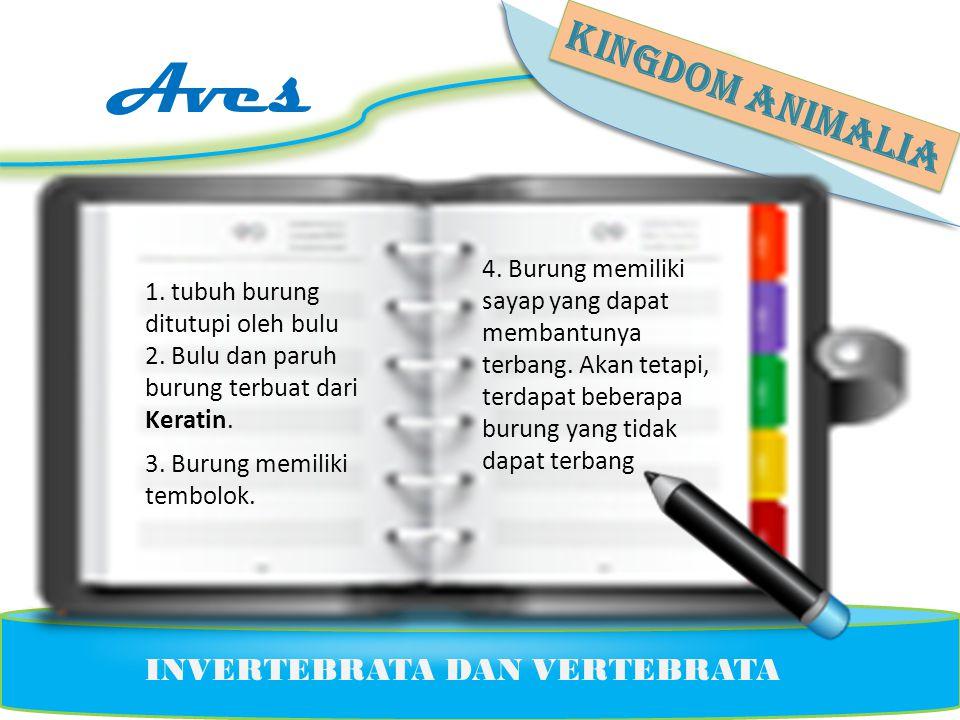 Aves KINGDOM ANIMALIA INVERTEBRATA DAN VERTEBRATA