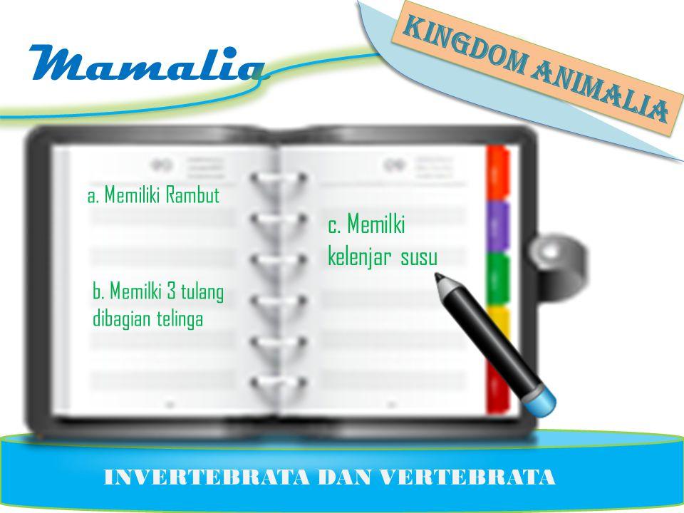 Mamalia KINGDOM ANIMALIA c. Memilki kelenjar susu a. Memiliki Rambut