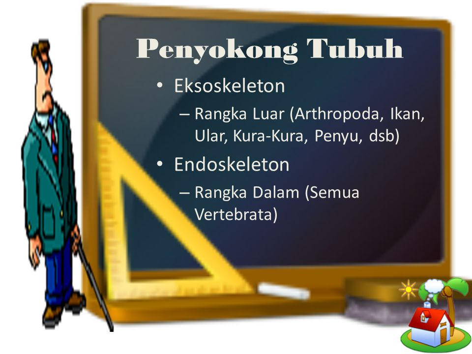 Penyokong Tubuh Eksoskeleton Endoskeleton