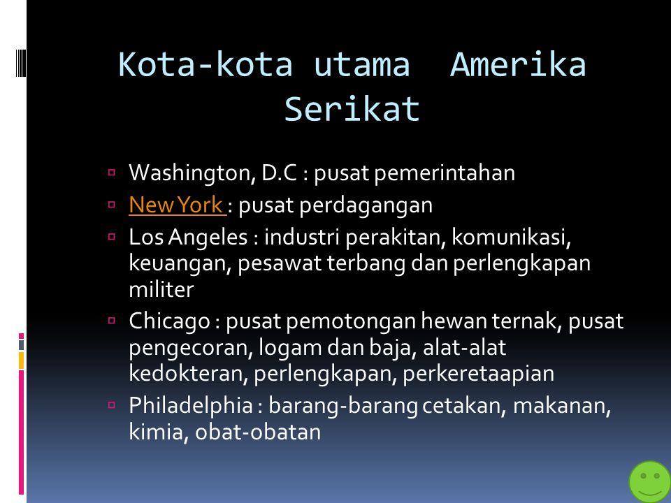 Kota-kota utama Amerika Serikat
