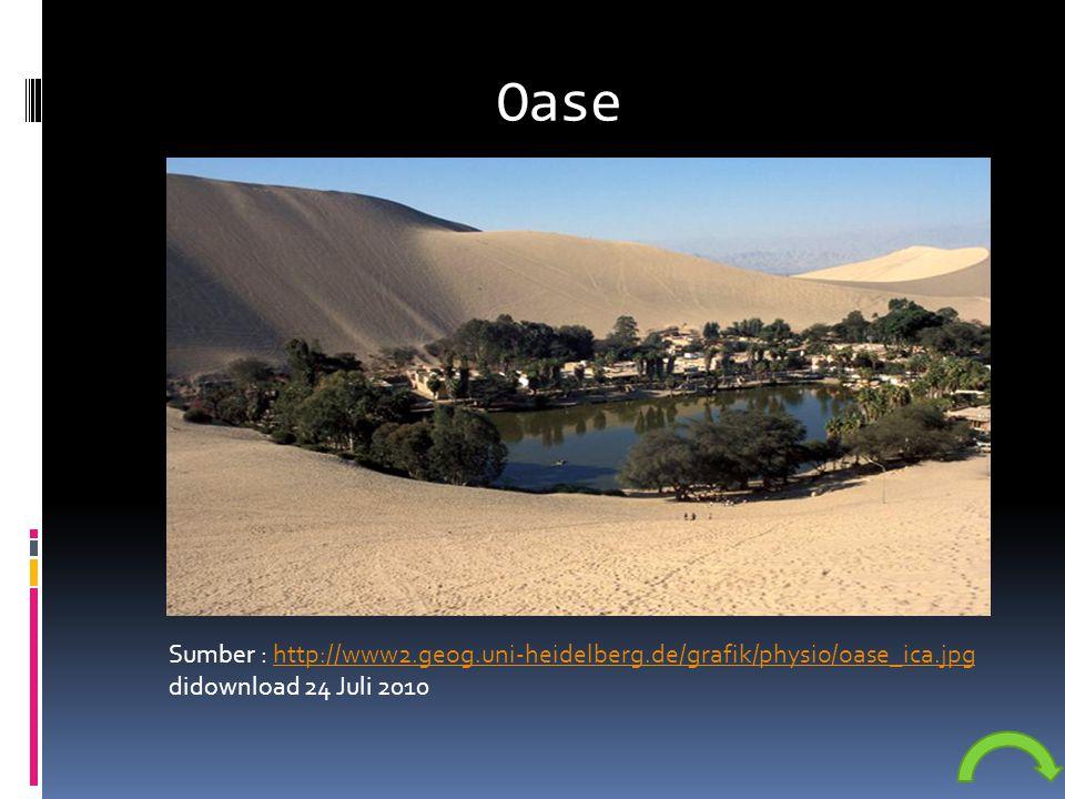 Oase Sumber : http://www2.geog.uni-heidelberg.de/grafik/physio/oase_ica.jpg didownload 24 Juli 2010