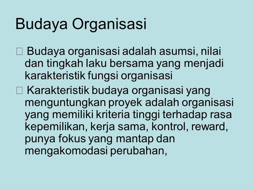 Budaya Organisasi  Budaya organisasi adalah asumsi, nilai dan tingkah laku bersama yang menjadi karakteristik fungsi organisasi.