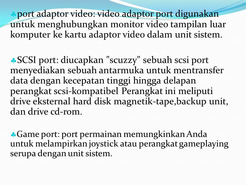 port adaptor video: video adaptor port digunakan untuk menghubungkan monitor video tampilan luar komputer ke kartu adaptor video dalam unit sistem.