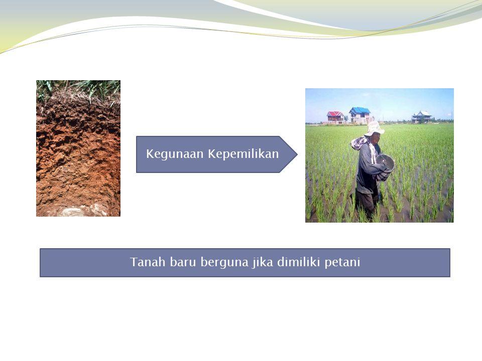 Tanah baru berguna jika dimiliki petani