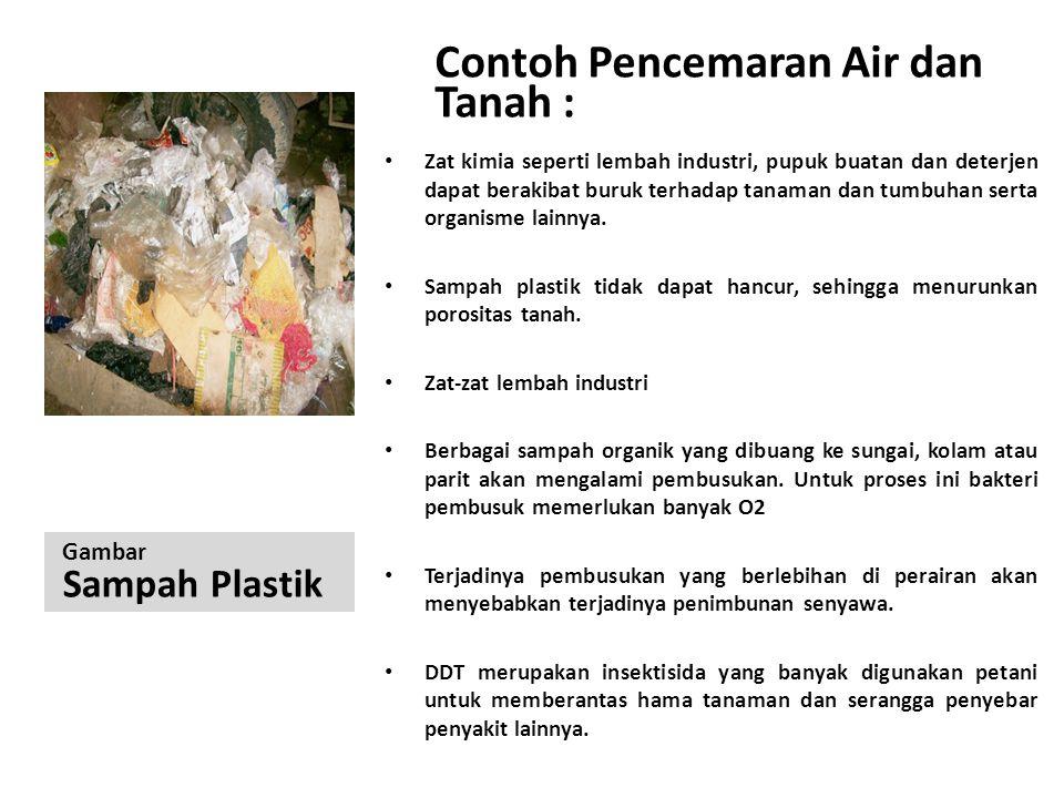 Contoh Pencemaran Air dan Tanah :