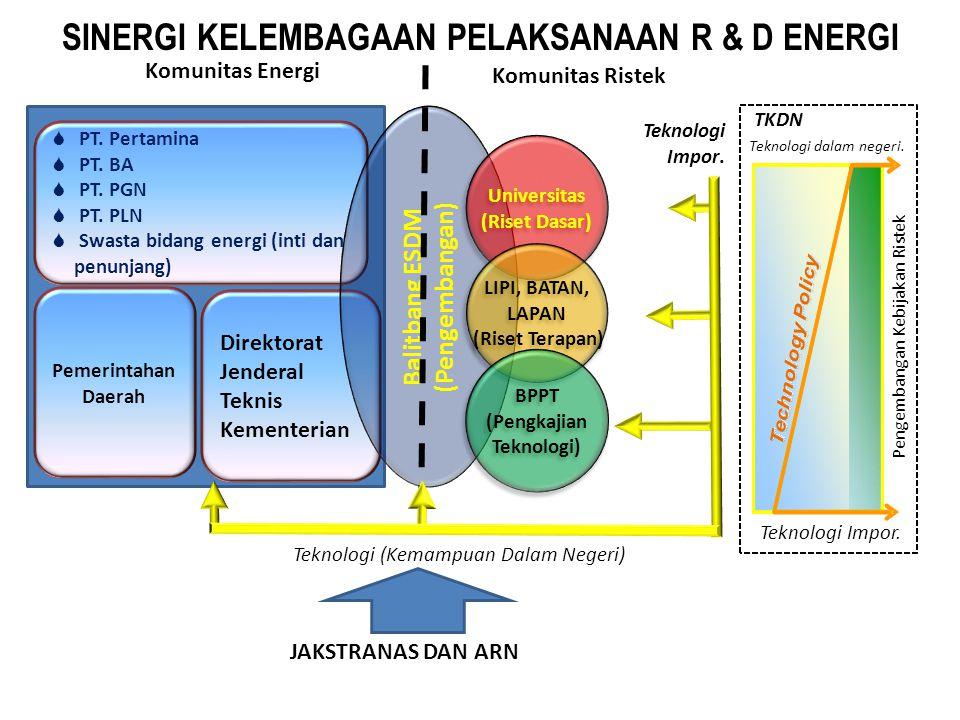SINERGI KELEMBAGAAN PELAKSANAAN R & D ENERGI