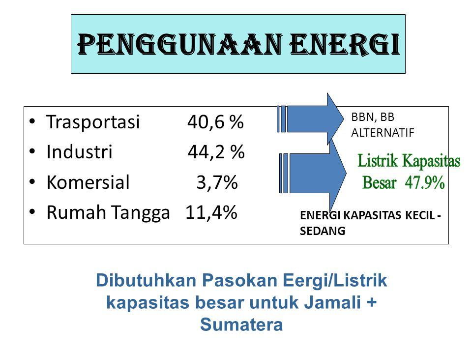 PENGGUNAAN ENERGI Trasportasi 40,6 % Industri 44,2 % Komersial 3,7%