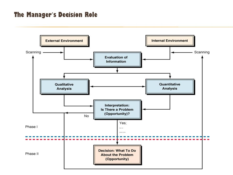 The Manager's Decision Role