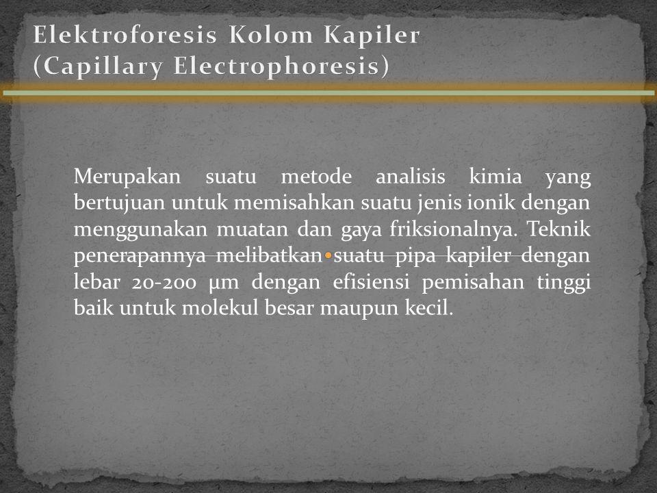 Elektroforesis Kolom Kapiler (Capillary Electrophoresis)