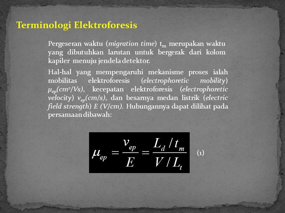 Terminologi Elektroforesis