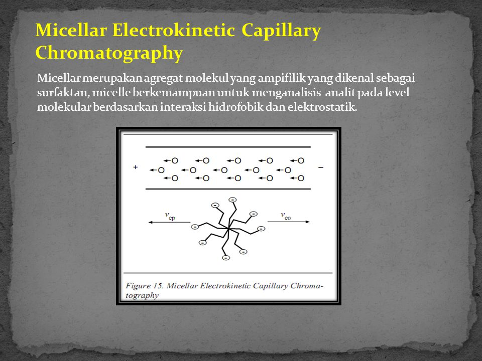 Micellar Electrokinetic Capillary Chromatography