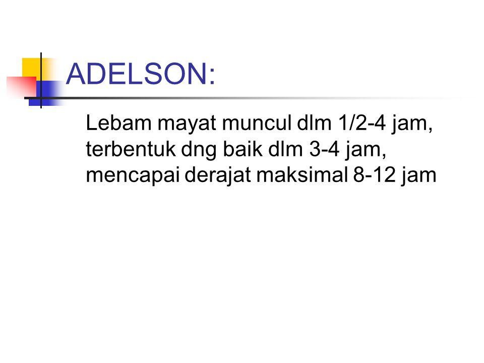 ADELSON: Lebam mayat muncul dlm 1/2-4 jam, terbentuk dng baik dlm 3-4 jam, mencapai derajat maksimal 8-12 jam.