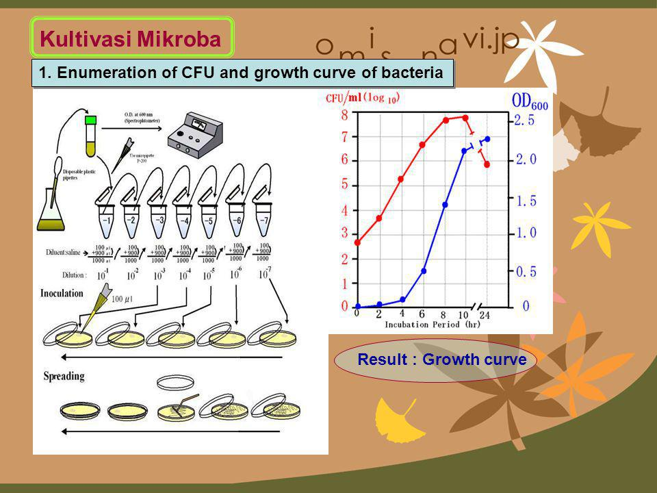 Kultivasi Mikroba 1. Enumeration of CFU and growth curve of bacteria