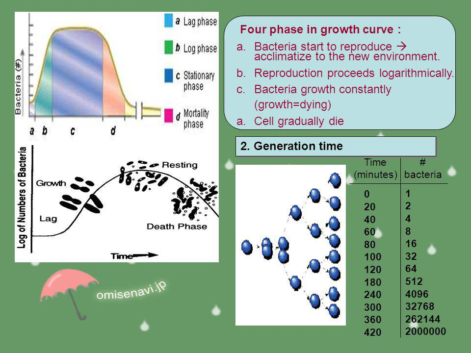 Four phase in growth curve :