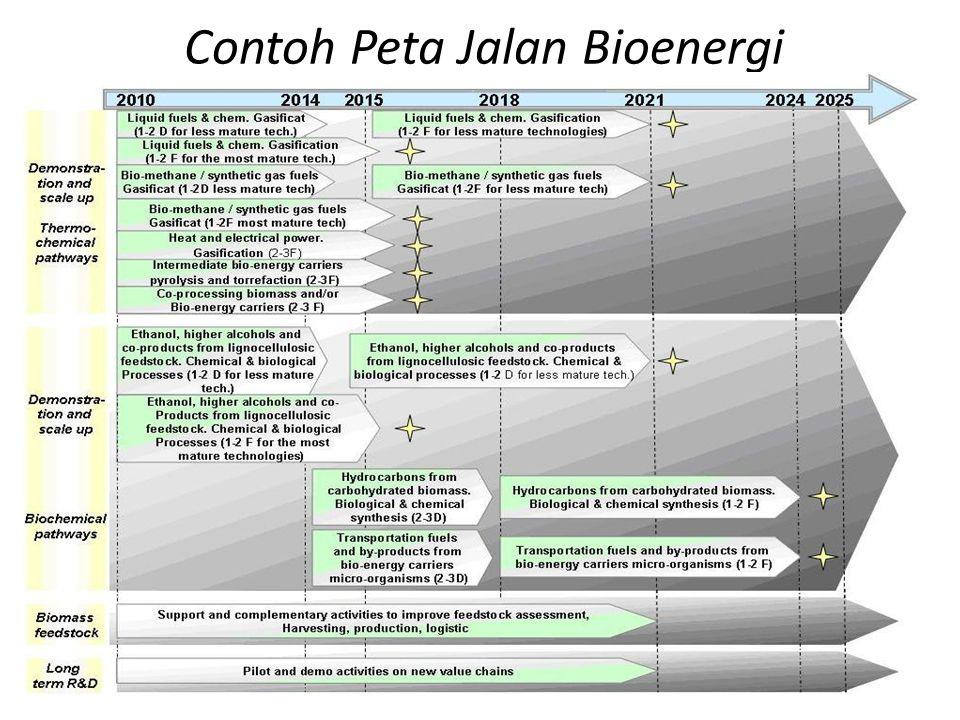 Contoh Peta Jalan Bioenergi