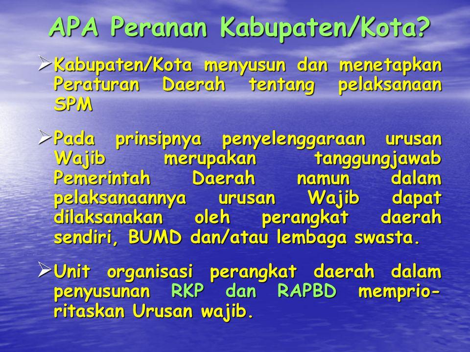 APA Peranan Kabupaten/Kota