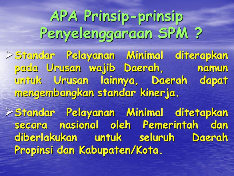 APA Prinsip-prinsip Penyelenggaraan SPM