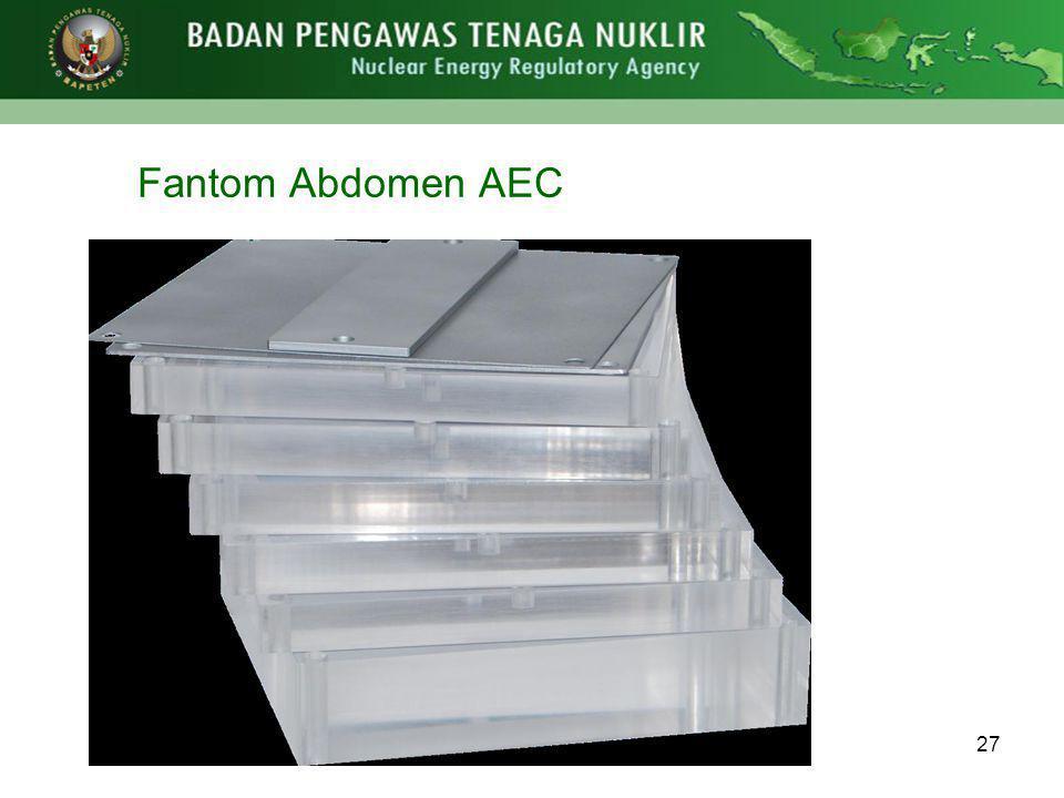 Fantom Abdomen AEC 27
