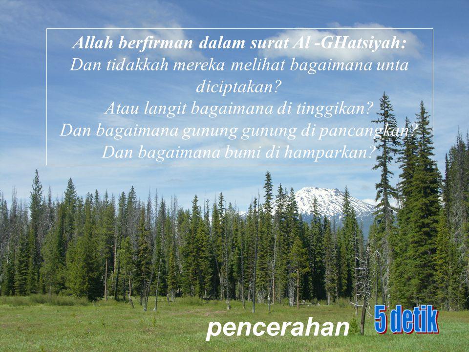 Allah berfirman dalam surat Al -GHatsiyah: