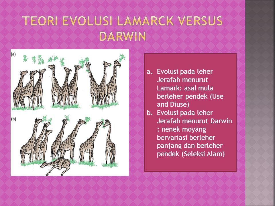 TEORI EVOLUSI LAMARCK VERSUS DARWIN