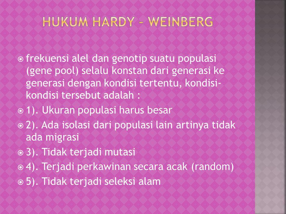 Hukum Hardy – Weinberg